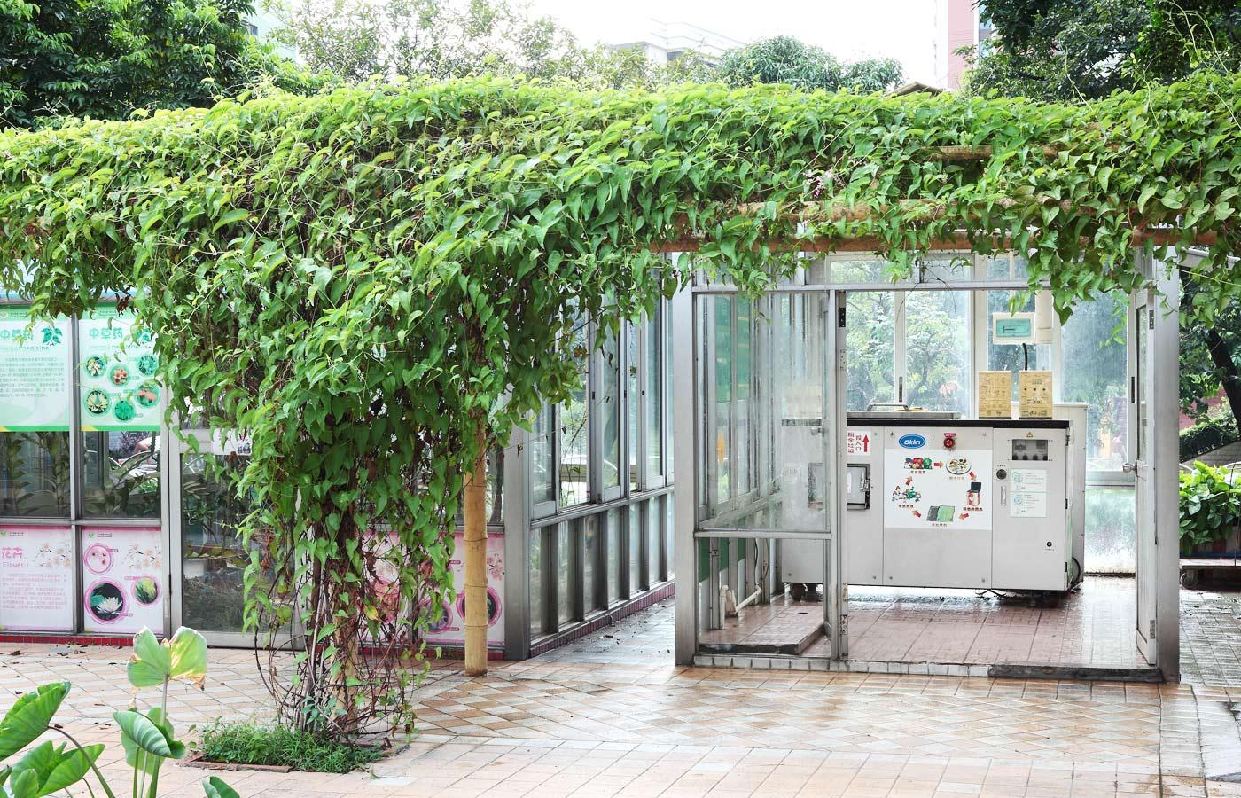 Guangzhou-Nursery-1