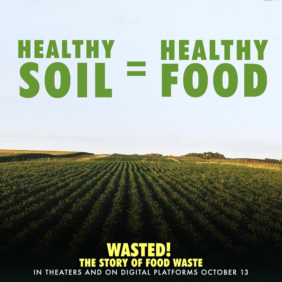 Healthy Soil_Wasted