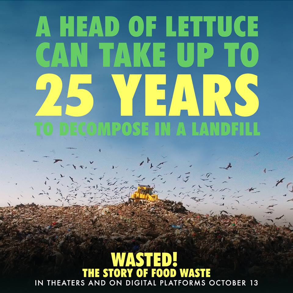 Landfill_Wasted